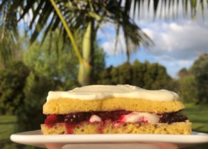 Low Carb Berry Shortcake in 15 Minutes